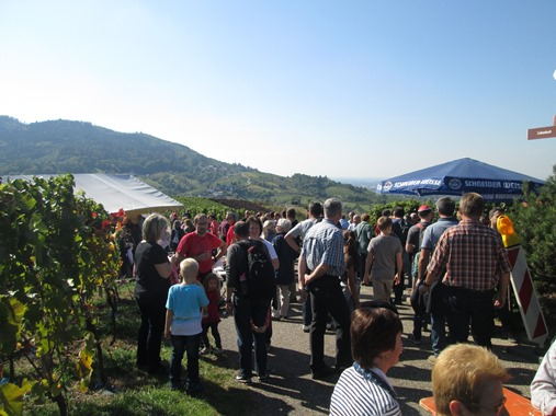 Weinwandertag 2015 (15)