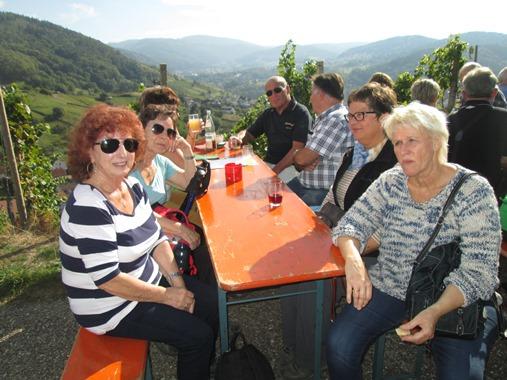 Weinwandertag 2015 (23)