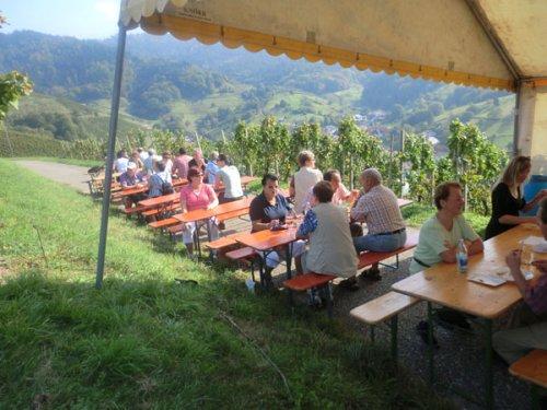 Weinwandertag 2011