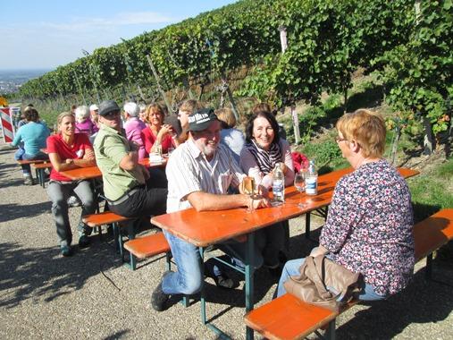 Weinwandertag 2015 (10)