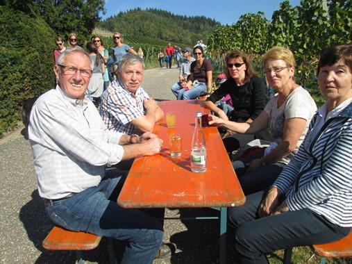 Weinwandertag 2015 (14)