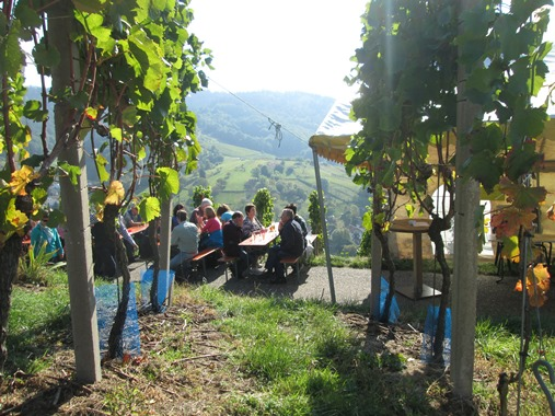 Weinwandertag 2015 (7)